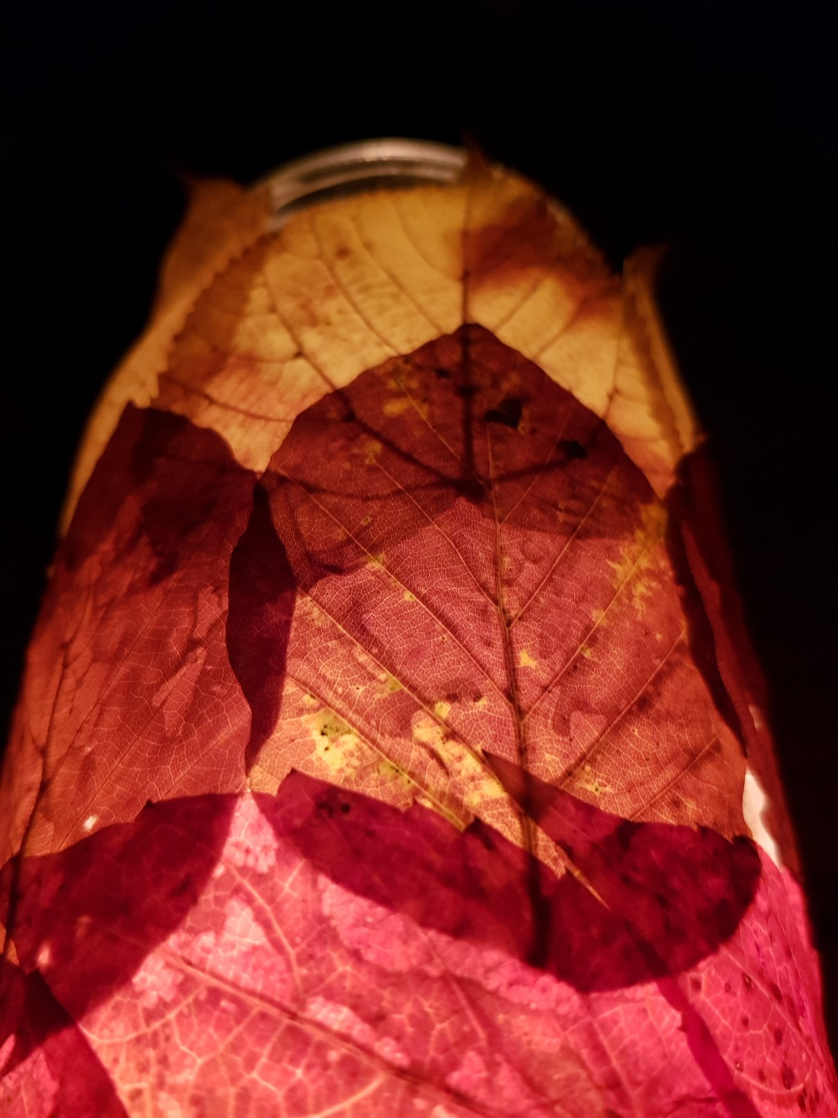 autumn leaves candle lamp lit