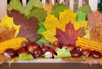autumn leaves decoration featured