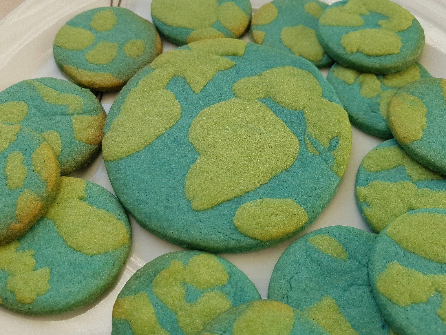 earth day cookies featured