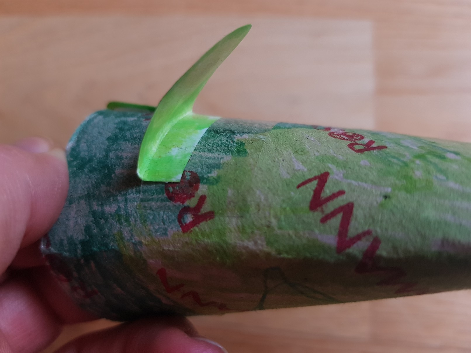 paper roll frog catching fly eyes side