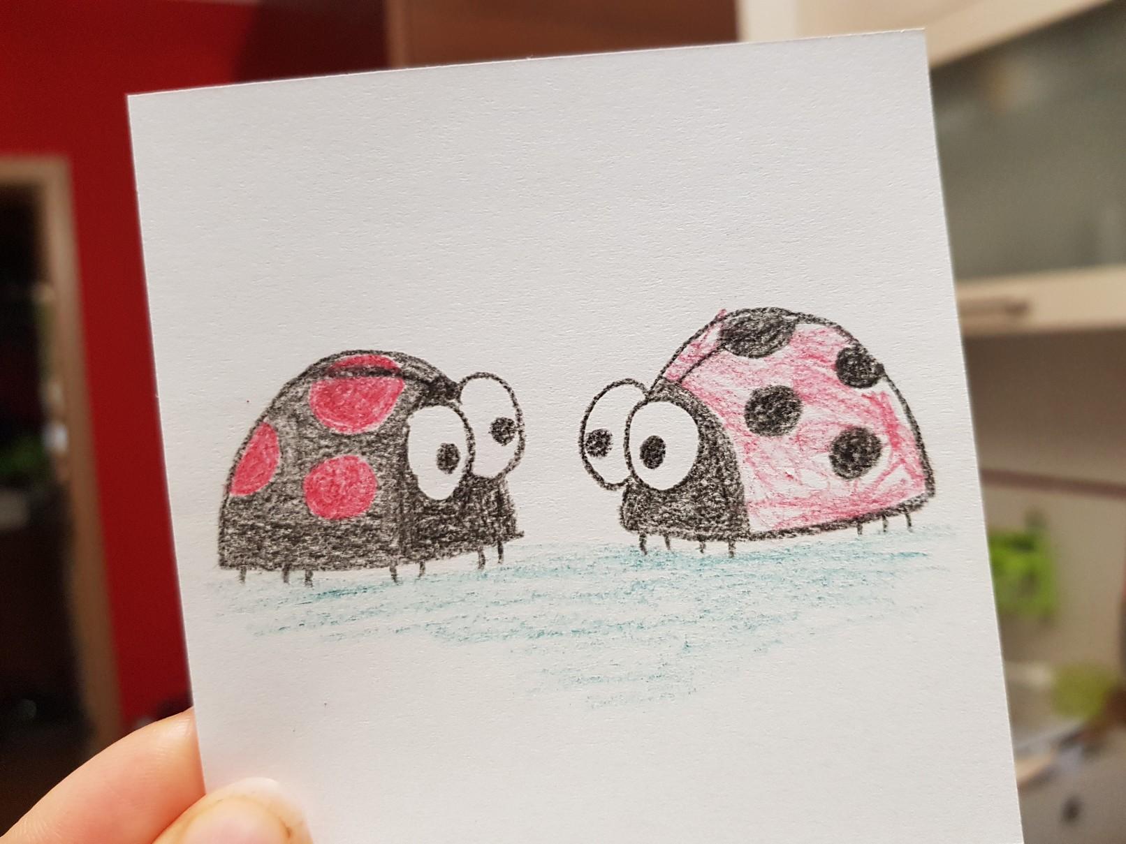 lunchbox art ladybug minuscule